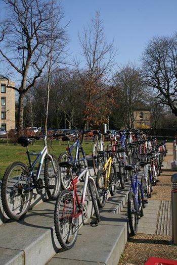 £40 Bikes!